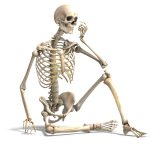 7 Fascinating Facts About Your Bones